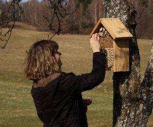 U Budinjaku postavljene nastambe za solitarne pčele